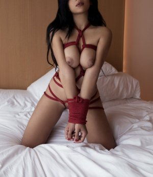 Kristelle erotic massage and busty live escorts